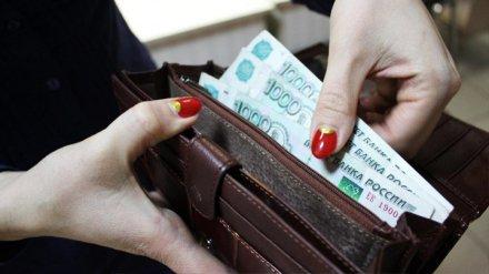 Воронежцам в декабре дважды выплатят пособие по уходу за ребёнком