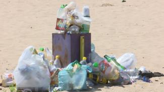 Заплыв в мусоре или платный вход. Как бизнесмены захватили популярные воронежские пляжи