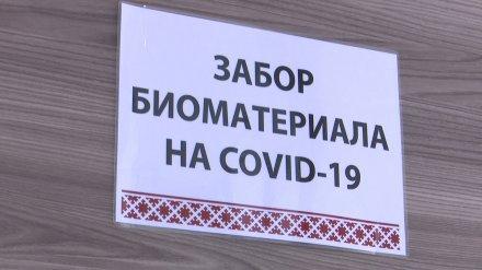 В Воронежской области провели 26 тыс. тестов на ковид за неделю