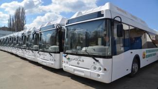 «Воронежпассажиртранс» получил 18 новых автобусов