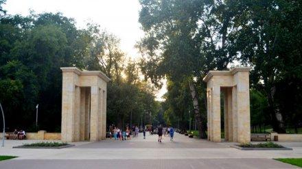 Реконструкцию «дикой» части Центрального парка в Воронеже отложили на неопределённый срок
