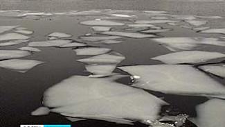 Воронежские спасатели предупреждают любителей зимней рыбалки о коварстве первого льда