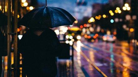 Новая неделя принесёт в Воронежскую область дожди