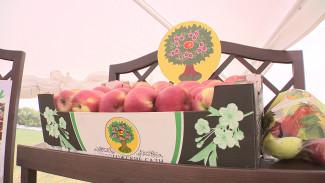 Яблоки, молочка и корма. Чем Воронежская область прославилась на всю страну