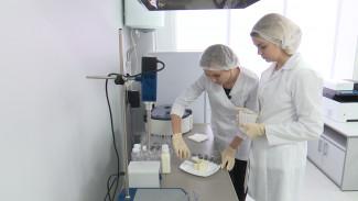 Сыр из сои и сливки из миндаля. Как в Воронеже делают молочные продукты без молока