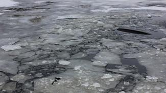 Под Воронежем рыбак нашёл в реке тело парня
