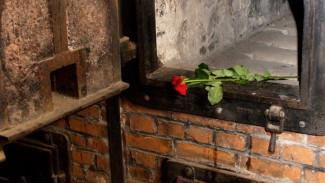 Крематорий в Воронеже: все «за» и «против»
