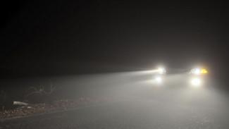 Водитель «ВАЗа», сбивший двоих подростков в Воронежской области, попал под дело