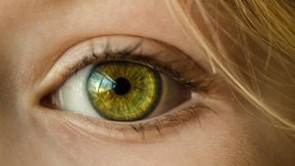Разъярённый воронежец воткнул в глаз сожительнице осколок разбитого стакана