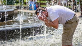 В Воронежской области в начале новой недели сохранится 40-градусная жара