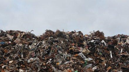 В Воронежской области за 5 лет построят 16 мусоросортировочных комплексов