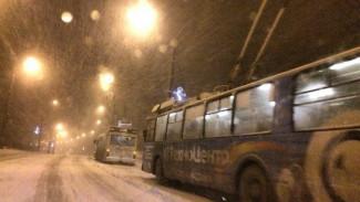 «Приходится менять маршрут». Воронежские троллейбусы увязли в снегу