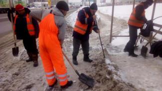 Мэр Воронежа нашёл способ улучшить уборку городских тротуаров