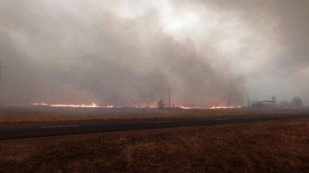 Работников санатория в Воронежской области эвакуируют по реке из-за лесного пожара