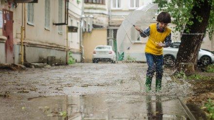 Последние майские выходные в Воронеже будут дождливыми