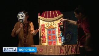В Воронеже два детских театра приостановят работу из-за коронавируса
