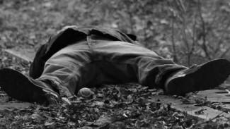 В воронежском селе 51-летний мужчина покончил с собой