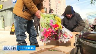В Воронеже проверяющие изымали мимозу и тюльпаны целыми коробками