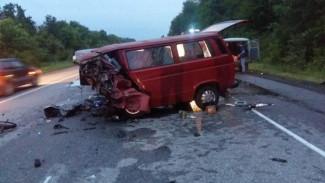 Число жертв страшного ДТП с легковушкой и микроавтобусом под Воронежем выросло до восьми