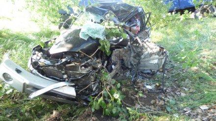 Воронежец на иномарке выехал на встречку и попал в смертельное ДТП с грузовиком