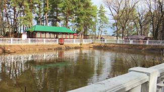 Жители Воронежской области скупают путёвки в детские лагеря и на турбазы
