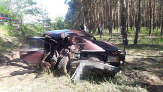 В Воронеже водитель «семёрки» вылетел в кювет и погиб