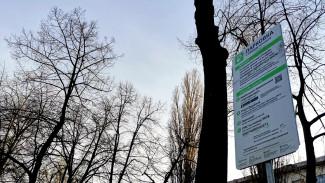 Воронежцам напомнили о зонах в центре города с бесплатной парковкой на час