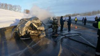 Безопасность воронежской трассы усилят после ДТП, в котором заживо сгорели 8 человек