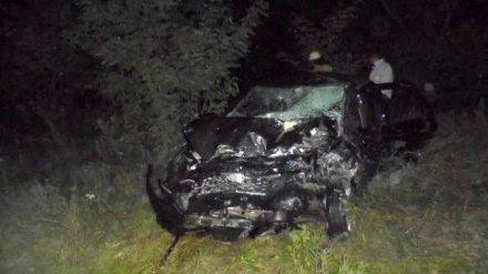 На трассе М-4 «Дон» в Воронежской области в ДТП с 4 авто и мотоциклом погибли двое