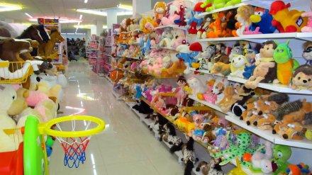 Воронежца отправили в колонию строгого режима за кражу игрушек из магазина