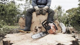 В Воронежской области ущерб от экологических преступлений превысил 96 млн рублей