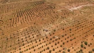 В гибели воронежского лётчика в Сирии обвинили четырёх террористов