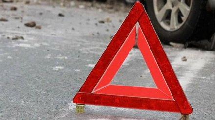 В Воронежской области в ДТП с трактором погибла женщина