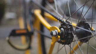 Общественники разработали первый вариант велокаркаса Воронежа