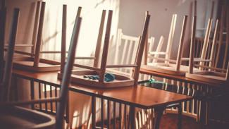 Вслед за Воронежем на досрочные каникулы ушли все школы региона