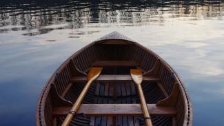 На реке Воронеж перевернулась деревянная лодка: погиб человек