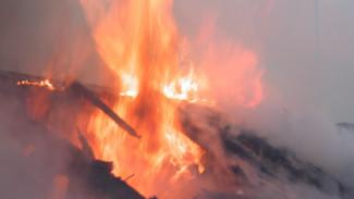 Под Воронежем при пожаре погибла 82-летняя пенсионерка