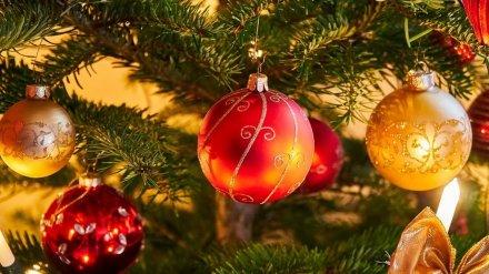Воронежцам напомнили, как установить новогоднюю ёлку и не спалить квартиру