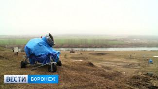 В Воронеже индустрия зимних развлечений терпит колоссальные убытки