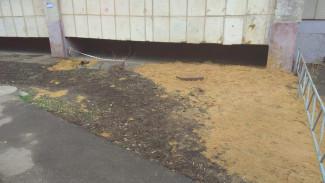 Огромную трещину под балконом воронежской 9-этажки «отремонтировали» песком