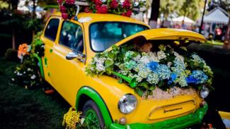 В Воронеже выставили на торги разработку концепции фестиваля «Город-сад»