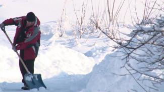 Жители Воронежской области сообщили о рекордном количестве снега