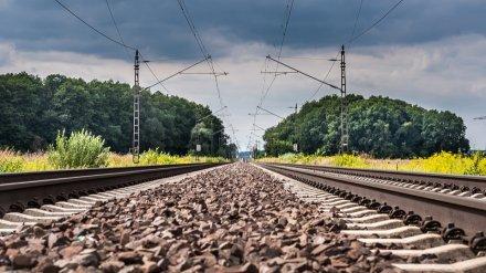 Новые поезда в Крым через Воронеж запустят весной 2020 года