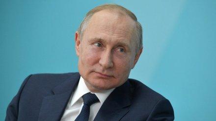 Владимир Путин задумался о возведении в Воронежской области «Великой Русской стены»