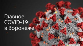 Воронеж. Коронавирус. 15 января