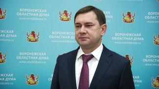 Спикер Воронежской облдумы: тариф на вывоз мусора увеличится незначительно