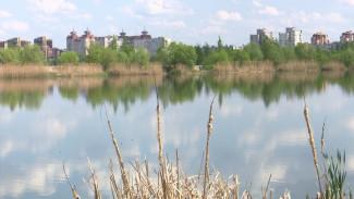 После находки в Воронежском водохранилище отрезанных ног возбудили дело об убийстве