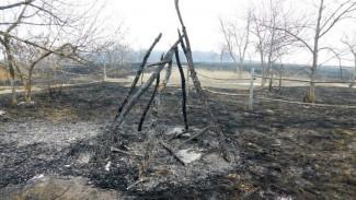 Прокуратура взяла на контроль резонансный пожар в воронежском Дивногорье