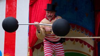 Durov Fest: в Воронеже пройдёт первый фестиваль циркового искусства