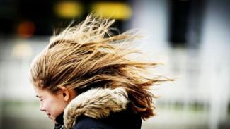 Синоптики объявили штормовое предупреждение в Воронежской области